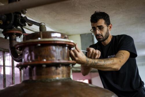 GIG00173-distilleria-giovi-valdina-messina-distillati-etna-vodka-london-dry-gin-vigneti-vigna-rifugio