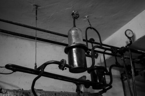 GIG00238-distilleria-giovi-valdina-messina-distillati-etna-vodka-london-dry-gin-vigneti-vigna-rifugio