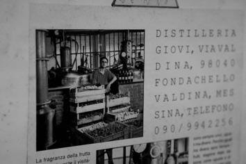 GIG09541-distilleria-giovi-valdina-messina-distillati-etna-vodka-london-dry-gin-vigneti-vigna-rifugio