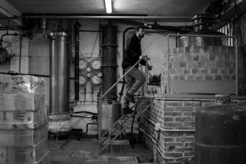 GIG00190-distilleria-giovi-valdina-messina-distillati-etna-vodka-london-dry-gin-vigneti-vigna-rifugio