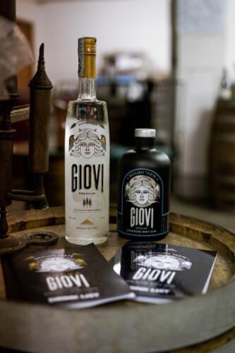 GIG00301-distilleria-giovi-valdina-messina-distillati-etna-vodka-london-dry-gin-vigneti-vigna-rifugio